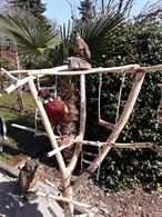 Nuovi trespoli per pappagalli e altri uccelli