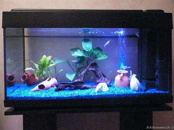 Mobile per acquario usato torino acquario wawe l for Acquisto acquario usato