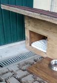 Cuccia per cani Bagnoli di sopra